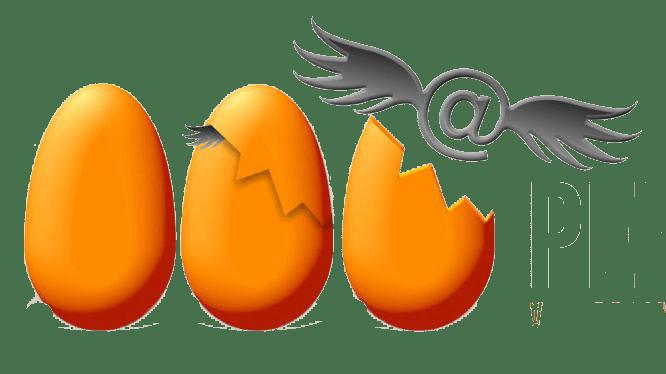 Logo de l'agence web pep's web